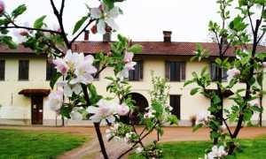 Fondazione Marazza primavera